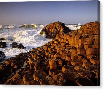 Giants Causeway, County Antrim, Ireland Canvas Print by The Irish Image Collection