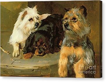 Give A Poor Dog A Bone Canvas Print by George Wiliam Horlor
