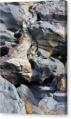 Glacial Pothole II Canvas Print by Michael Friedman