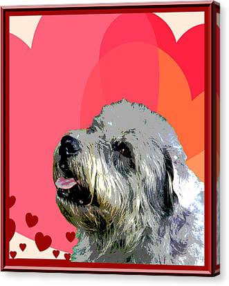 Glen Of Imaal Terrier Canvas Print by One Rude Dawg Orcutt