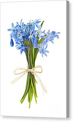 Blue Wildflower Bouquet Canvas Print by Elena Elisseeva