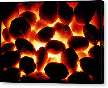 Glowing Fire Of Smokeless Fuel Canvas Print by Cordelia Molloy