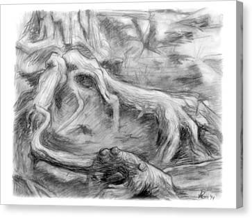 Gnarled Canvas Print by Adam Long