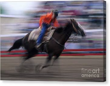 Rodeo Go For Broke Canvas Print by Bob Christopher