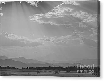 Gods Country Bw Canvas Print by James BO  Insogna