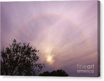 God's Masterpiece Canvas Print by Carolyn Wright