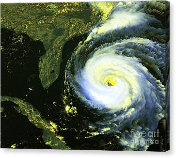 Goes 8 Satellite Image Of Hurricane Fran Canvas Print by Science Source