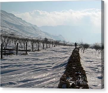 Going To Nowhere  Canvas Print by Issam Hajjar