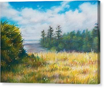 Golden Meadow In The Sun Canvas Print by Anna Abramska