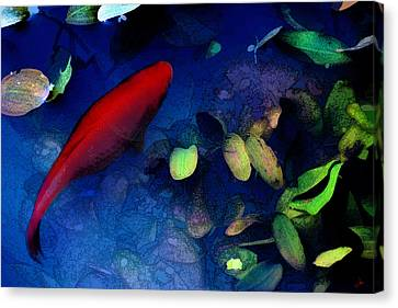 Goldfish Canvas Print by Ron Jones