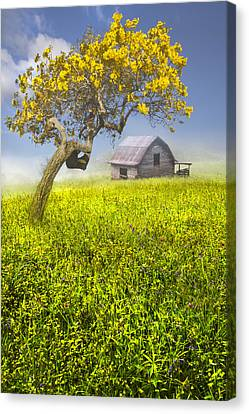 Good Morning Spring Canvas Print by Debra and Dave Vanderlaan