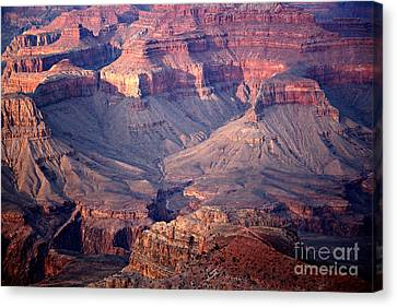 Grand Canyon Evening Interior Canvas Print by Michael Kirsh