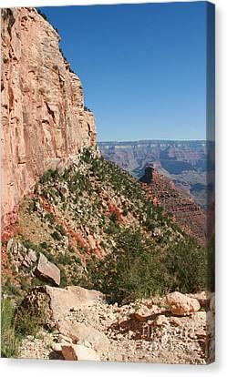 Grand Canyon National Park Bright Angel Loop Arizona Usa Canvas Print by Audrey Campion