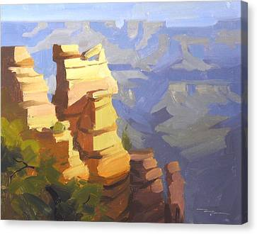 Grand Canyon Canvas Print by Richard Robinson