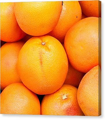 Grapefruit Canvas Print by Tom Gowanlock