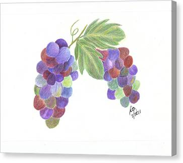 Grapes Canvas Print by DebiJeen Pencils