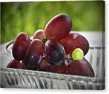 Grapes Canvas Print by Gwyn Newcombe