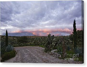 Gravel Road In Rural Area Canvas Print by Jeremy Woodhouse