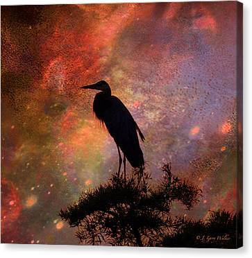 Great Blue Heron Viewing The Cosmos Canvas Print by J Larry Walker