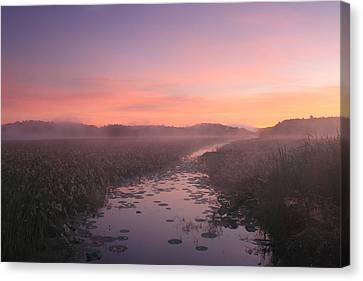 Great Meadows National Wildlife Refuge Dawn Canvas Print by John Burk