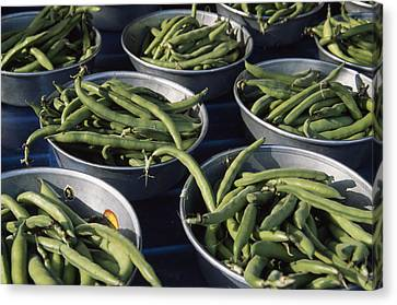 Green Beans In Tin Buckets For Sale Canvas Print by David Evans