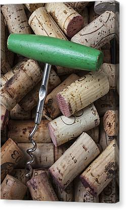 Green Corkscrew Canvas Print by Garry Gay