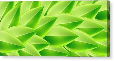 Green Feathers, Full Frame Canvas Print by Ralf Hiemisch