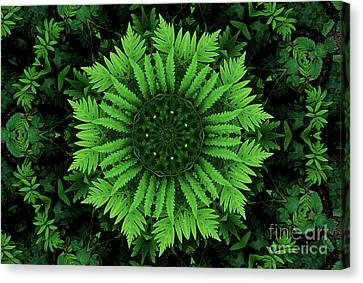 Green Forest Ferns Mandala - 2 Canvas Print by Renata Ratajczyk