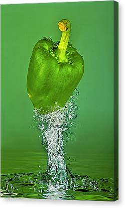 Green Pepper Splash Canvas Print by Travel Images Worldwide