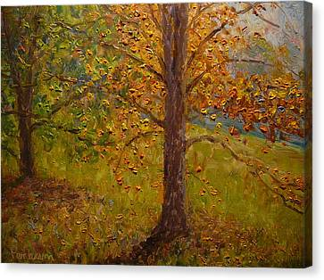 Green Turns To Gold Canvas Print by Terry Perham
