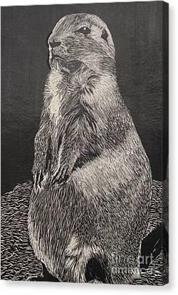 Groundhog Canvas Print by William Ohanlan