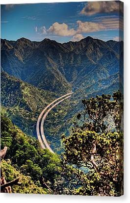 H-3 From The Aiea Loop Trail Canvas Print by Dan McManus