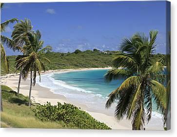 Halfmoon Bay, Antigua And Barbuda Canvas Print by Michele Falzone