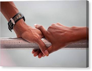 Hands Of President Obama And Michelle Canvas Print by Everett