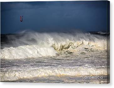 Hanging In There Canvas Print by Avalon Fine Art Photography