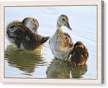 Hanging With The Buds Canvas Print by Deborah Benoit