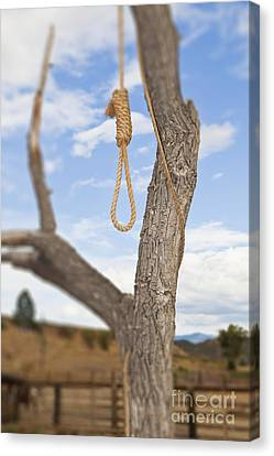 Hangman Noose In A Tree Canvas Print by Bryan Mullennix