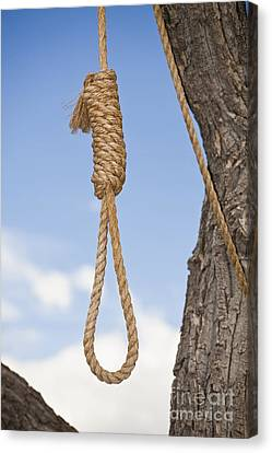Hangmans Noose In A Tree Canvas Print by Bryan Mullennix
