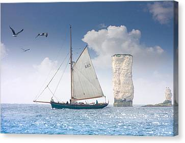 Happy Days Canvas Print by Richard Piper