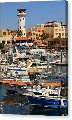 Harbor Waterfront In Cabo San Lucas Canvas Print by Roupen  Baker