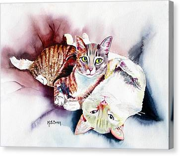 Hathaway Cats Canvas Print by Maria Barry