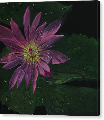Hawaiian Water Lily - Pink Canvas Print by Sherry Robinson