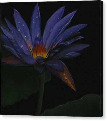 Hawaiian Water Lily - Purple Canvas Print by Sherry Robinson