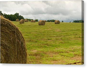 Haybales In Field On Stormy Day Canvas Print by Douglas Barnett