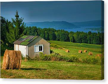 Hayfield And Lake II Canvas Print by Steven Ainsworth