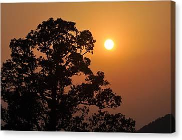Hazy Sunset Canvas Print by Marty Koch