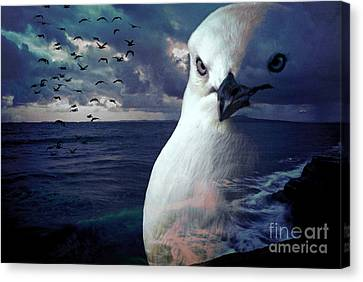 He Spotted Land And Knew He Was Home Canvas Print by Karen Lewis