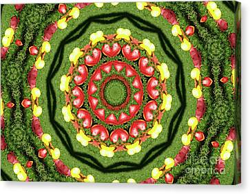 Heart Kaleidoscope Canvas Print by Mariola Bitner