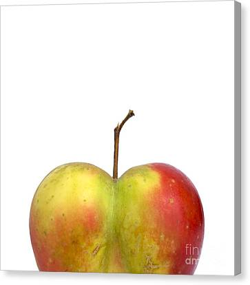 Heart.apple. Canvas Print by Bernard Jaubert