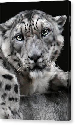 Hercules Canvas Print by Big Cat Rescue